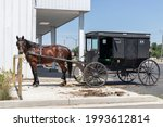 Horse and Buggy in northern Indiana. Horse-drawn vehicles have the same rights and responsibilities as any other vehicle.