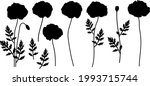 poppies silhouettes flowers...   Shutterstock .eps vector #1993715744