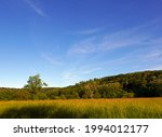 Suggestive Bucolic View In The...