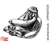 vector hand drawn sketch of... | Shutterstock .eps vector #199405535