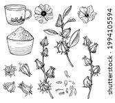 hand drawn  hibiscus tea set....   Shutterstock .eps vector #1994105594