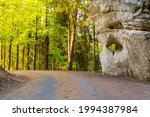 asphalt road in the forest with ... | Shutterstock . vector #1994387984