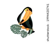 a large toucan with a huge...   Shutterstock .eps vector #1994420741