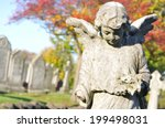 Stone Angel In Cemetery In...