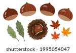 chestnut and maple hand painted ... | Shutterstock .eps vector #1995054047