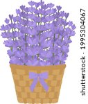 lavender flowers in basket with ...   Shutterstock .eps vector #1995304067