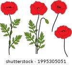 poppies flowers vector...   Shutterstock .eps vector #1995305051