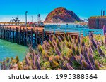 Morro Rock Juts Up Out Of The...