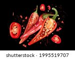red chili pepper with chili...   Shutterstock .eps vector #1995519707