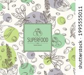 background with superfood  goji ... | Shutterstock .eps vector #1995555011