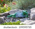 Garden Frog Lying Among...