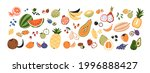 set of different fruits and... | Shutterstock .eps vector #1996888427