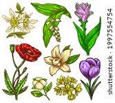 hand drawn flowers sketch ...   Shutterstock .eps vector #1997554754