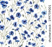 pattern  flowers  cornflower | Shutterstock .eps vector #199759001