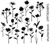 vector silhouettes of garden... | Shutterstock .eps vector #1997834891