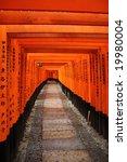 torii gates   fushimi inari... | Shutterstock . vector #19980004