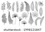 line art tropical leaves....   Shutterstock .eps vector #1998121847