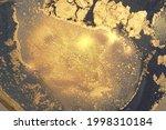 vinatge shining abstract gold ...   Shutterstock .eps vector #1998310184