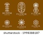 beautiful geometric flower...   Shutterstock .eps vector #1998388187