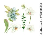 Botanical Watercolor Set With...