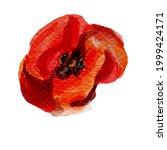 Watercolor Botanical Clipart...