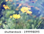 spring flowers  outdoors | Shutterstock . vector #199998095