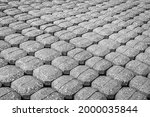 Monochrome Image Of The...