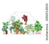 plants growing in pots or...   Shutterstock .eps vector #2000513024