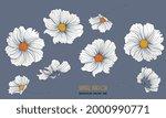 wild white daisy flowers on a... | Shutterstock .eps vector #2000990771