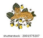 jungle cartoon tropical bengal... | Shutterstock .eps vector #2001575207