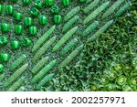Assortment Of Green Dummy Fresh ...