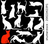 cats in different poses ... | Shutterstock .eps vector #2002342391
