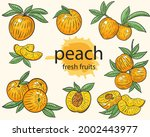 peaches  vector hand drawing...   Shutterstock .eps vector #2002443977