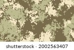 camouflage pattern background.... | Shutterstock .eps vector #2002563407