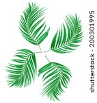 green leaf of palm tree on... | Shutterstock . vector #200301995