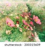 Vintage Cosmos Flower Paper...