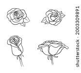 sketch rose flower set. pencil... | Shutterstock .eps vector #2003309891