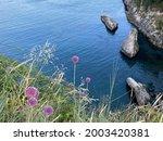 Summer Sea Landscape. Beautiful ...