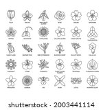 set of flower thin line and...   Shutterstock .eps vector #2003441114