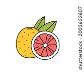 grapefruit  olor line icon....