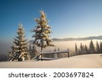 Amazing Winter Landscape With...