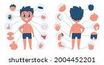 boy body parts. child body part ... | Shutterstock .eps vector #2004452201