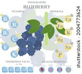 infographic about nutrients in... | Shutterstock .eps vector #2004773624
