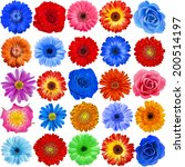 Collection Set Of 25 Colorful...