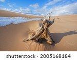 Winter Landscape With A Stump ...