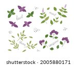 set of spicy fresh herbs for...   Shutterstock .eps vector #2005880171