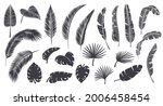 silhouettes tropical leaves.... | Shutterstock .eps vector #2006458454
