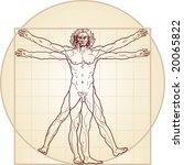 the vitruvian man. detailed... | Shutterstock . vector #20065822