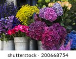 Colorful Variety Of Flowers...