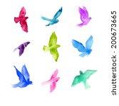 watercolor birds. | Shutterstock . vector #200673665